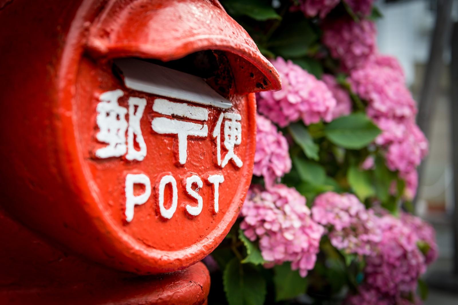 官製はがきとは?切手は不要だけど郵便はがきと違うの?