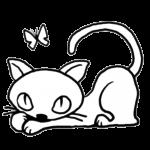 猫が仰向けに寝るのはなぜ?
