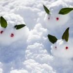 スノーシューズ【メンズ】のおすすめ人気ランキング!