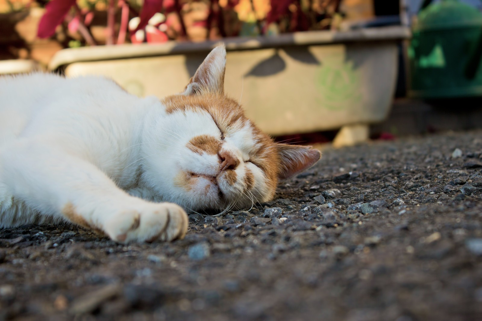 睡眠の質を高める15の方法!