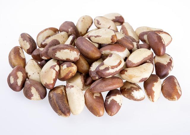 体を健康にするブラジルナッツの魅力を知ろう!