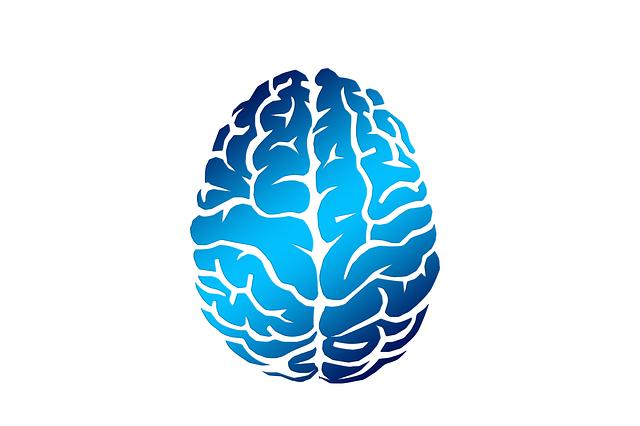 物忘れが激しいあなたに!脳のトレーニングで頭の健康を守ろう!